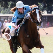Holbrook riders selected for World Cup team